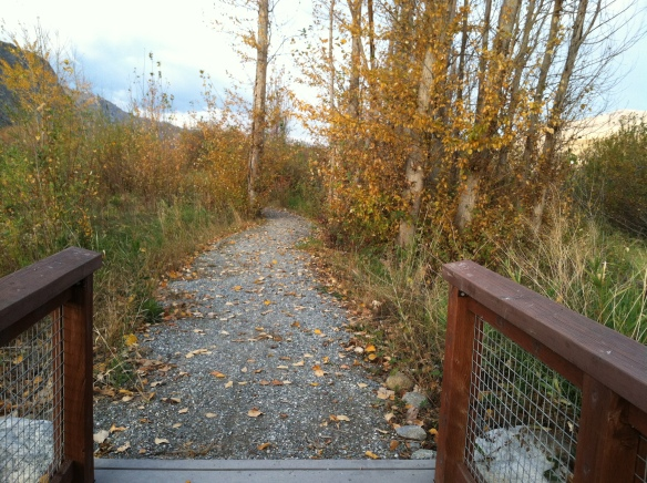 ADA accessibility works with crushed surfaces but has its challenges. (Beebe Springs Natural Area, near Chelan, WA)